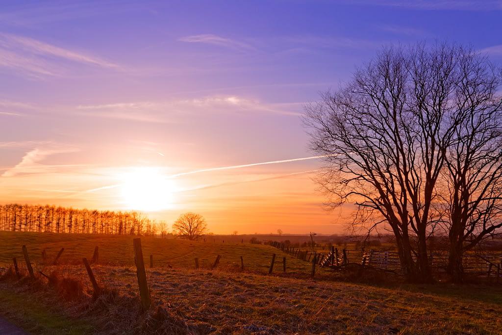 Couché de soleil dans la prairie par Stéphane Thirion spécialiste en photographie Belgique