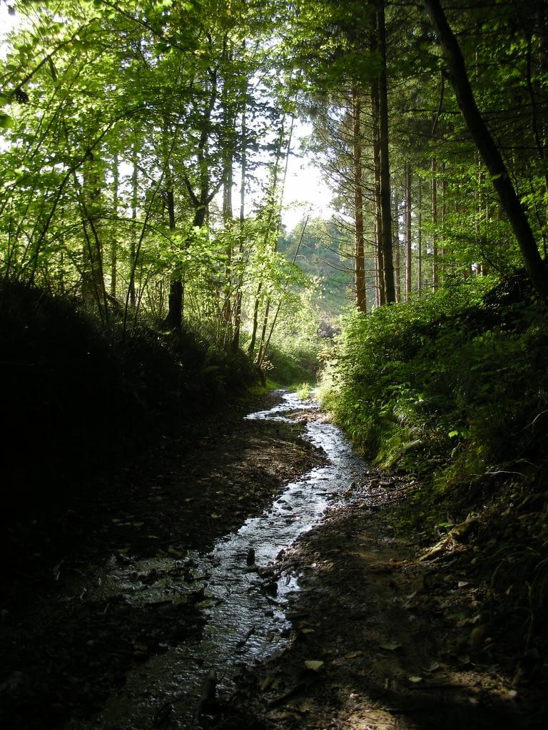 Photographie des plus jolies paysage de Gaume province du Luxembourg Stéphane Thirion