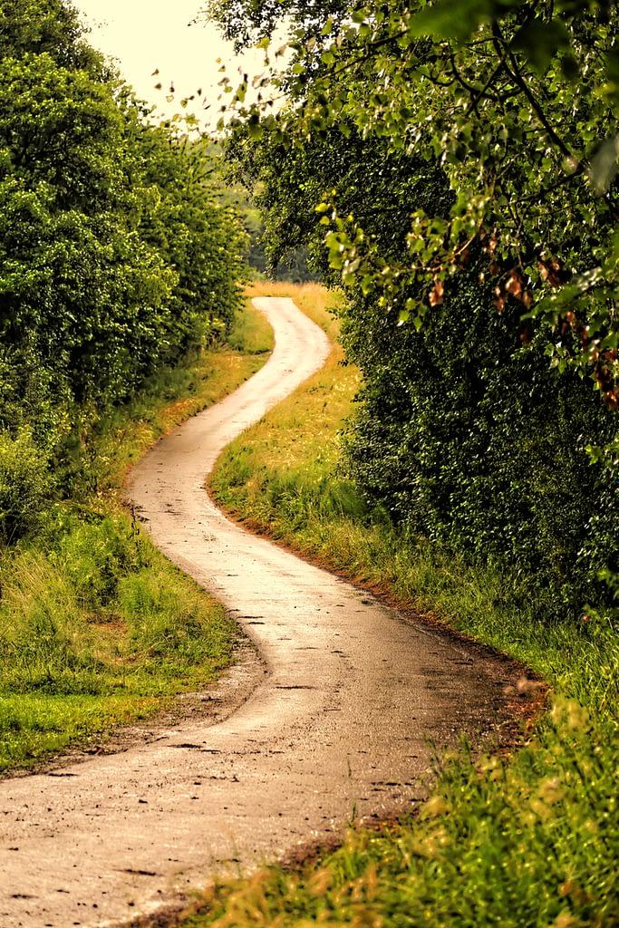 Route de campagne province du Luxembourg par Stéphane Thirion photographe région